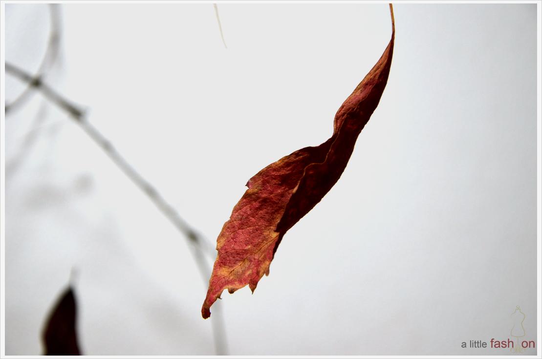 DIY-Dienstag: Der Herbst in seinen schönsten Farben  – Rot + Kupfer