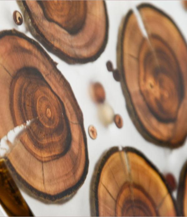 DIY-Naturdeko: Harzbild mit Holzeinschluss