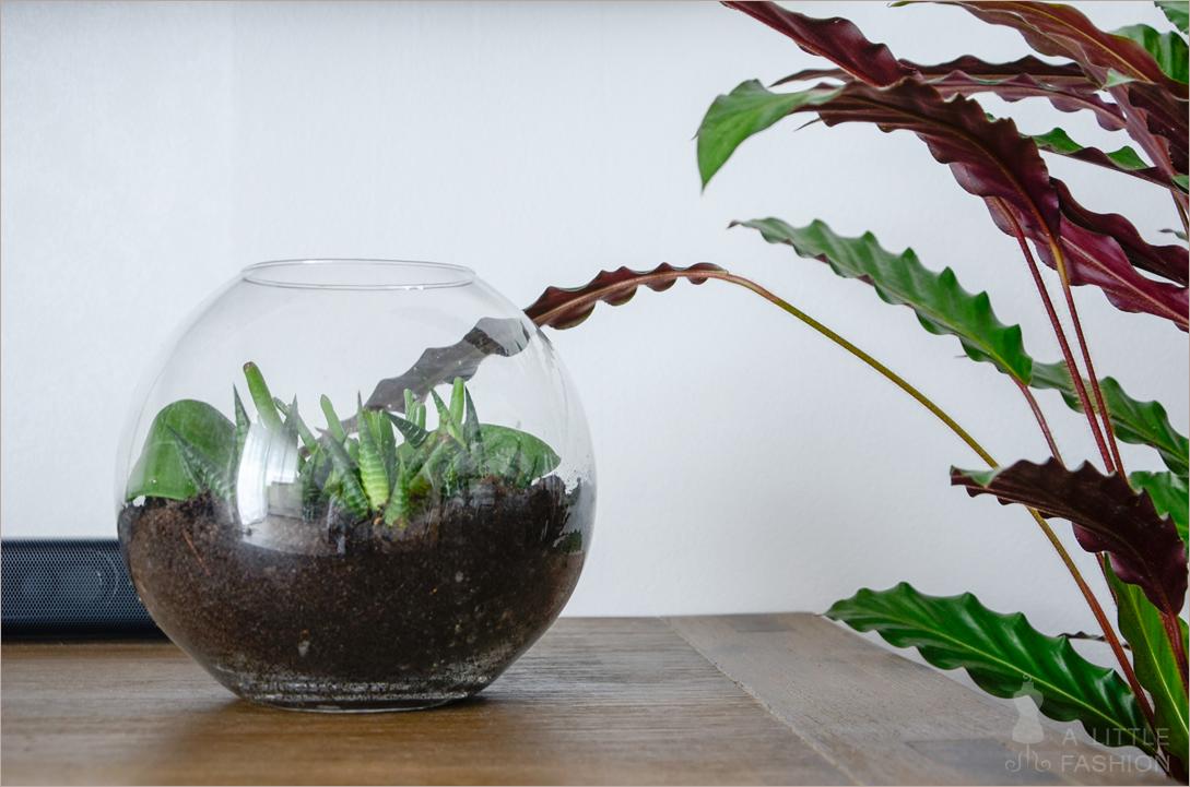 [DIY] Blumentöpfe aus Glaskugeln und Sand