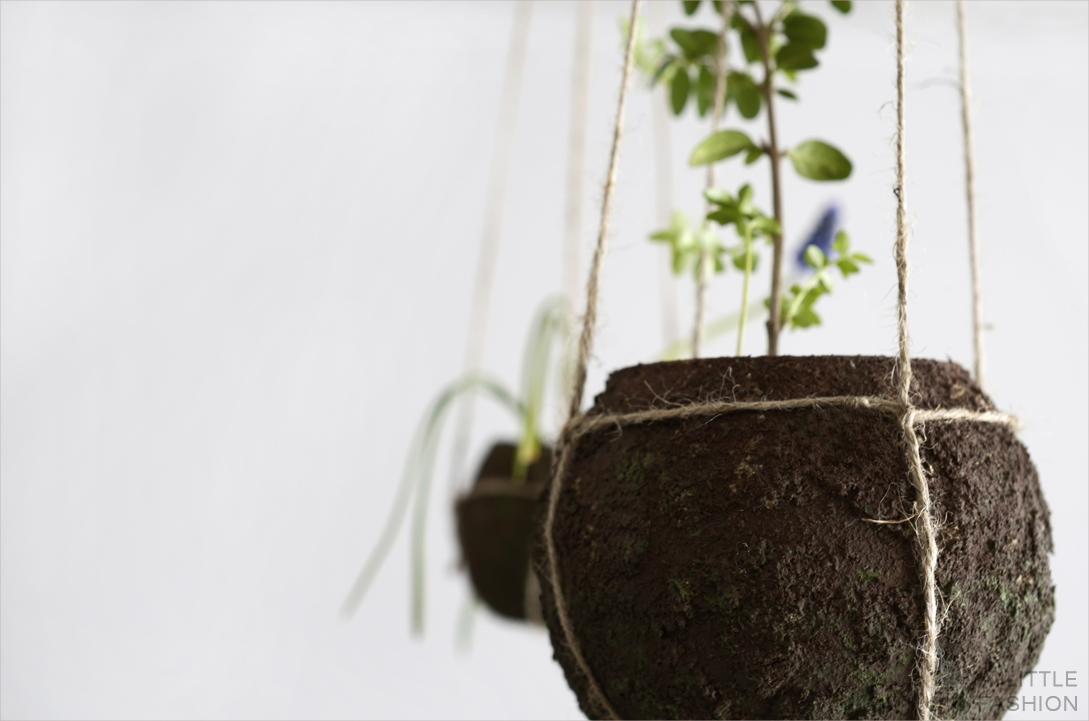 Kokedama pflegeleicht... DIY string garden
