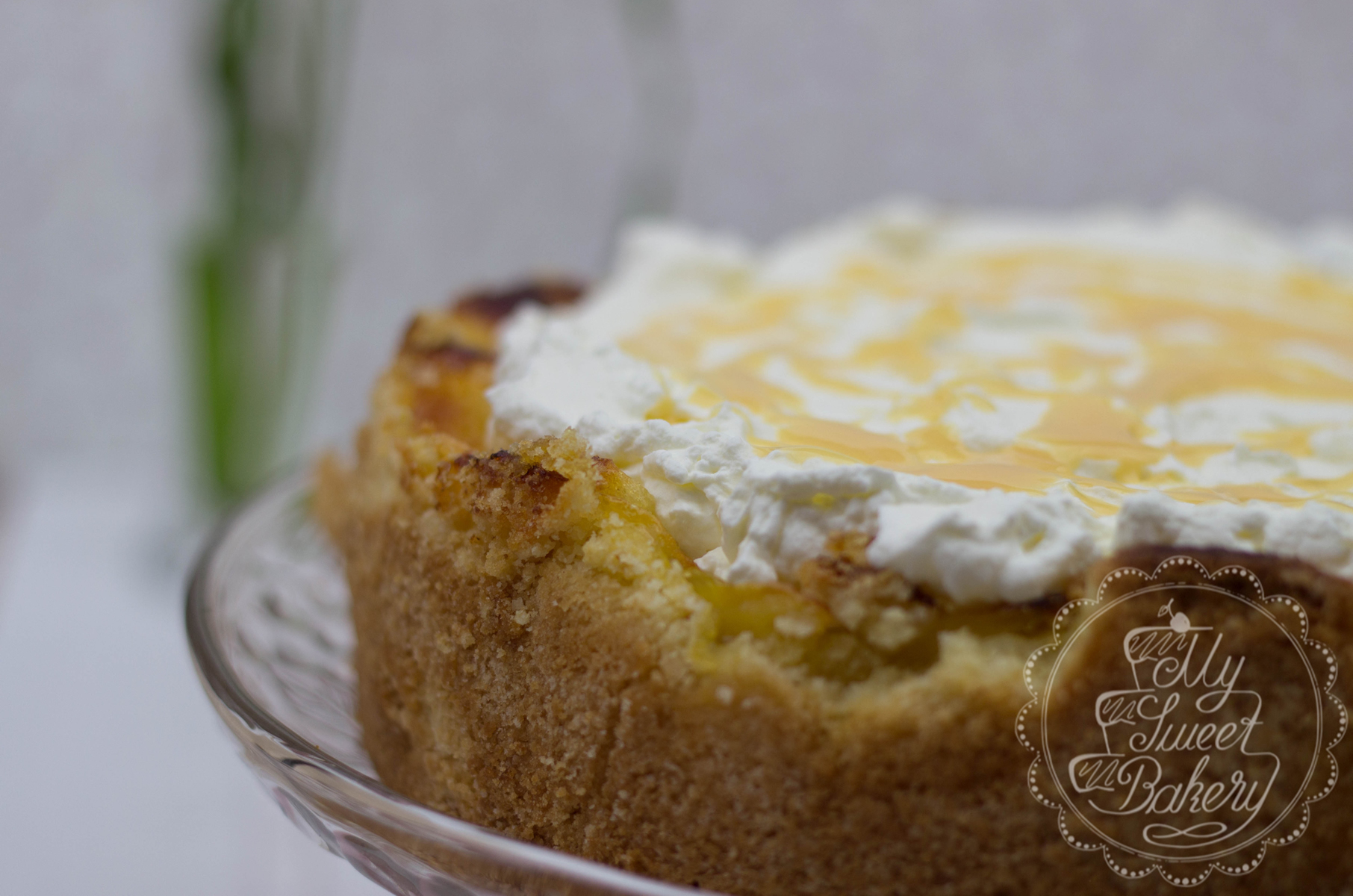 Apfel-Wein-Torte5