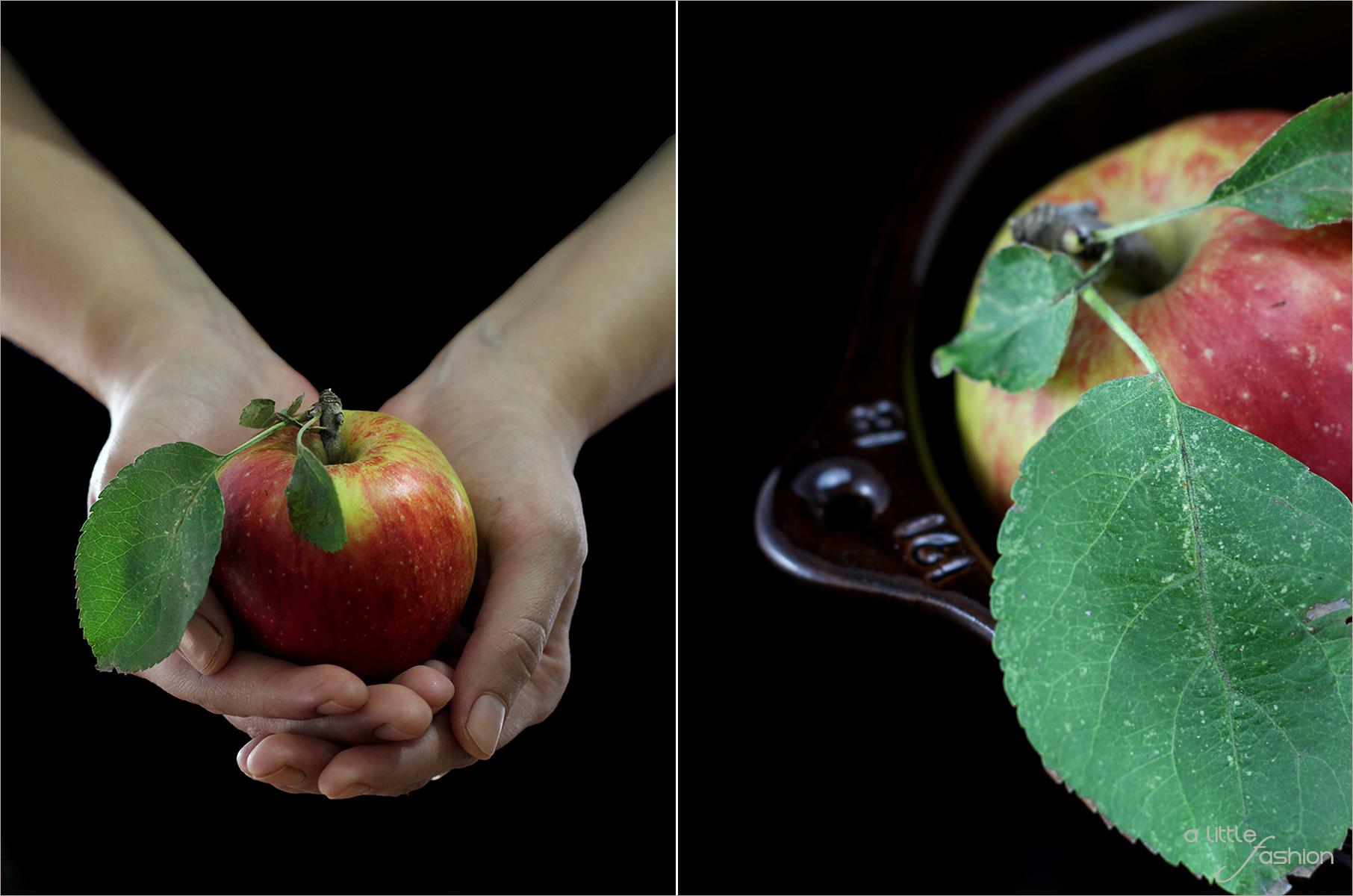 rezept_schokoladen-apfel-kuchen10