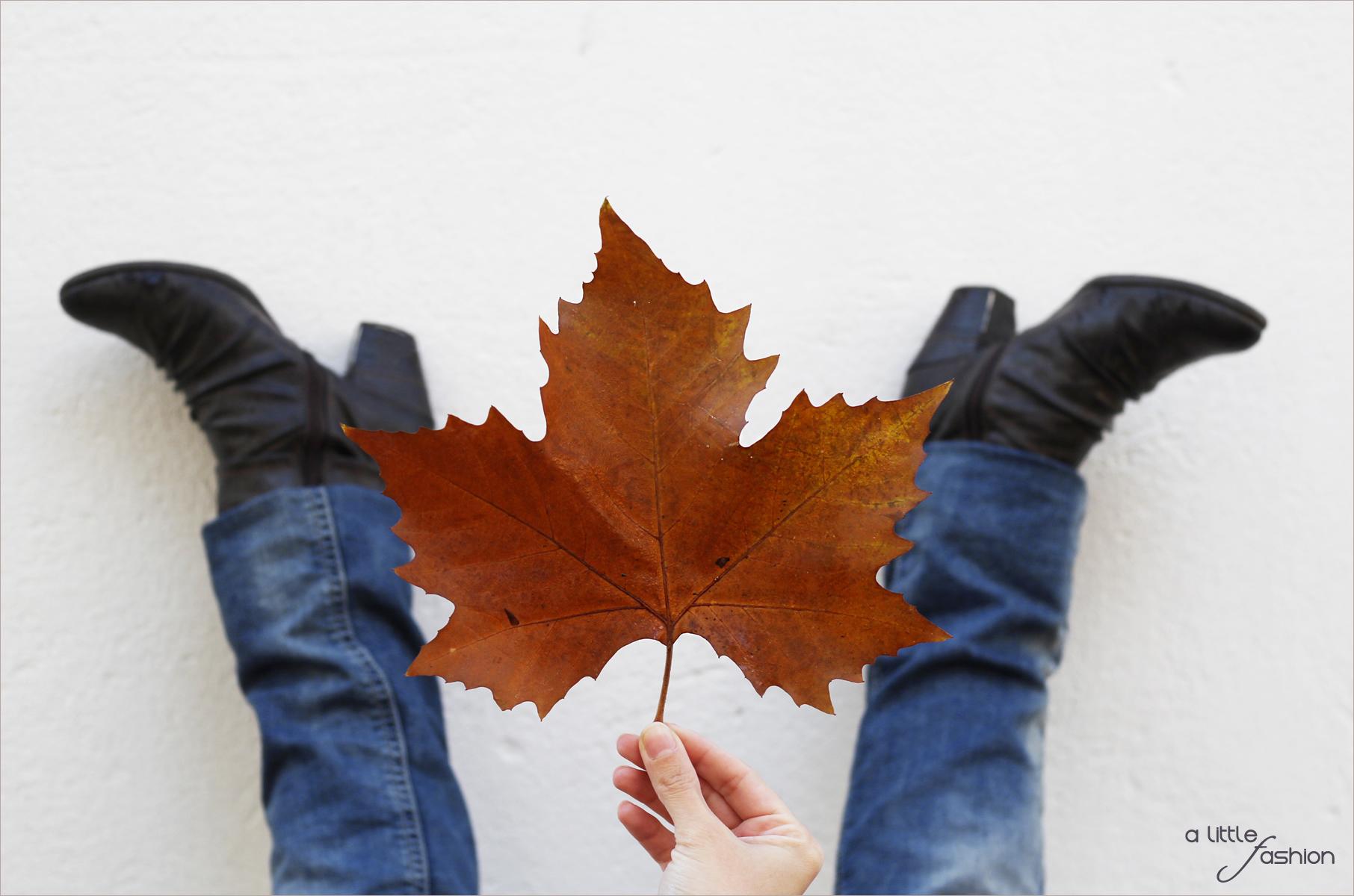 Die besten Schuhe für Herbst/Winter