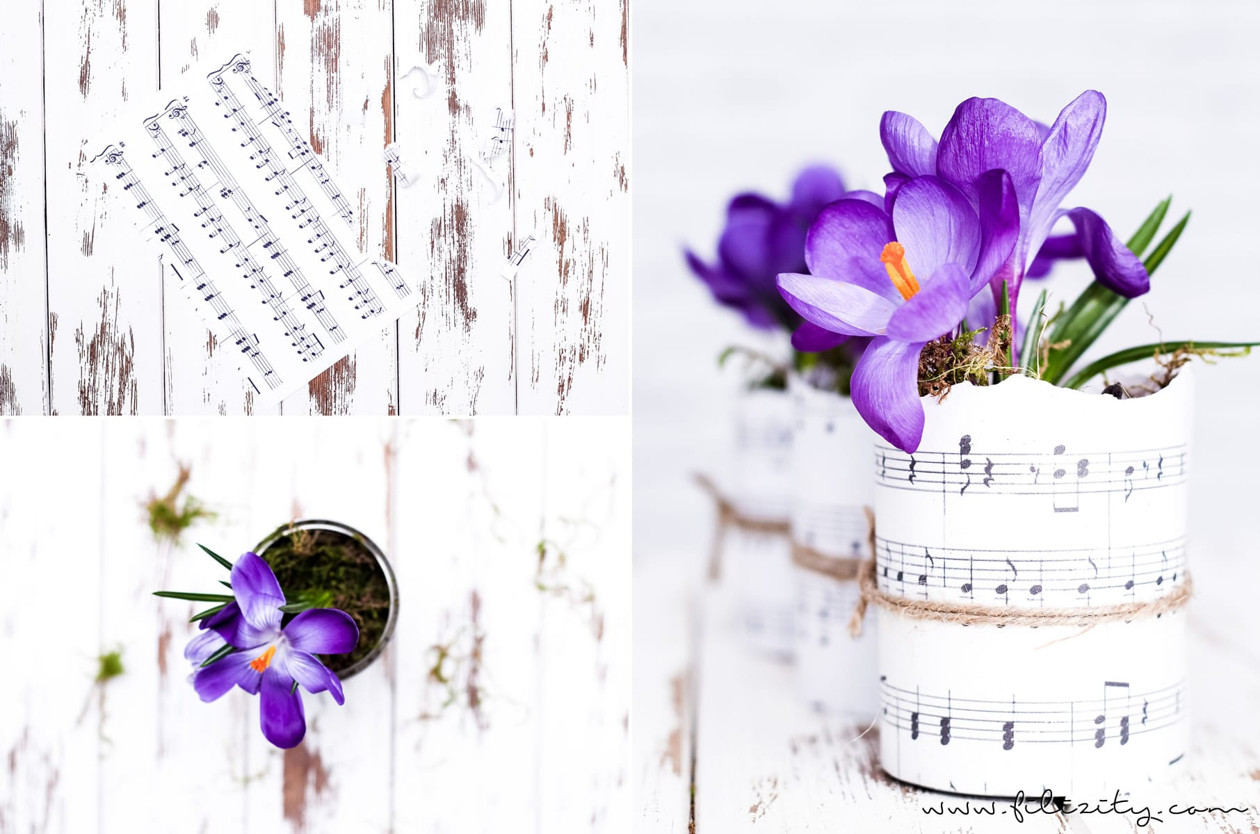 DIY Blumentöpfe aus Dosen und Papier | Upcycling & Frühlingsdeko | Filizity.com | DIY-Blog aus dem Rheinland #frühling #upcycling