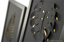 3D Cut-out-Bilder Monstera und Palmenblatt