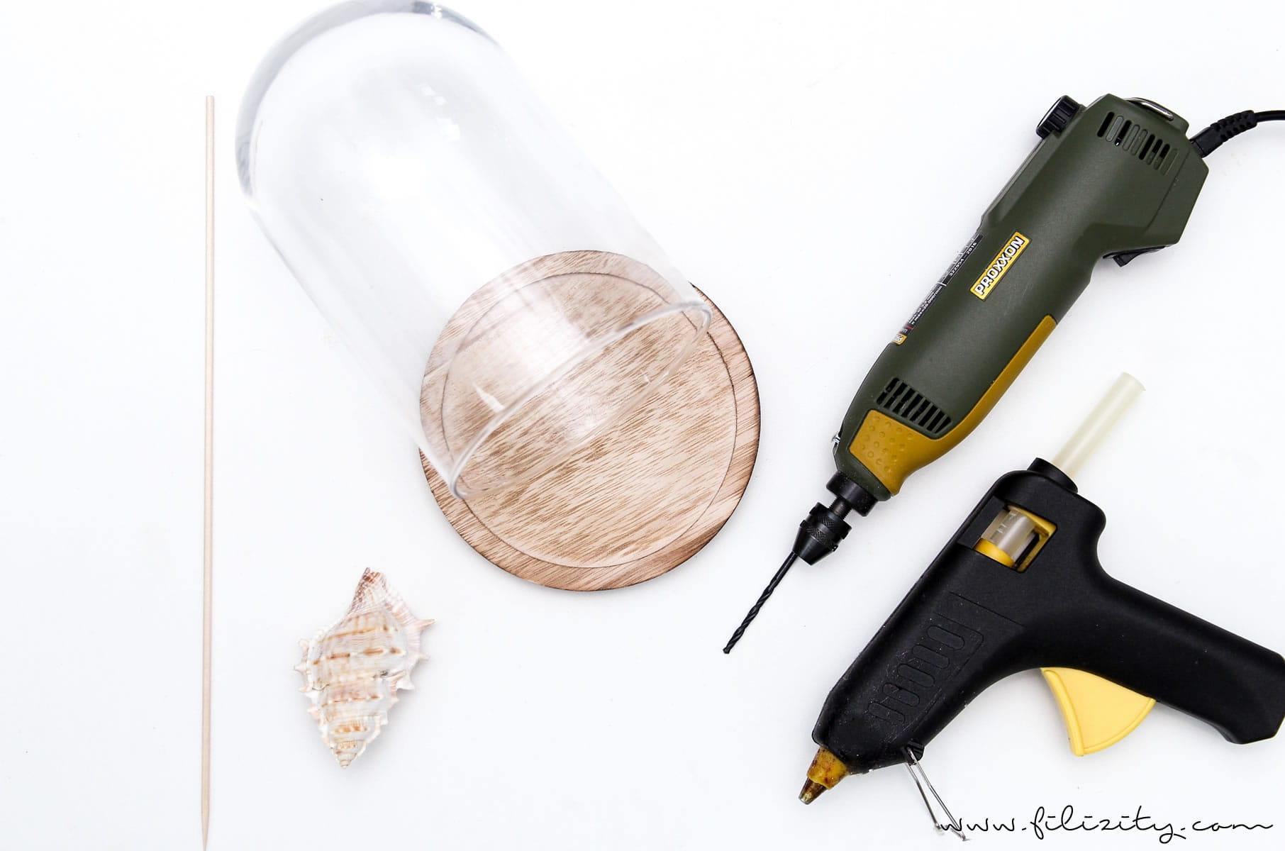 Sommer-DIY: Maritime Deko mit Muscheln selber machen