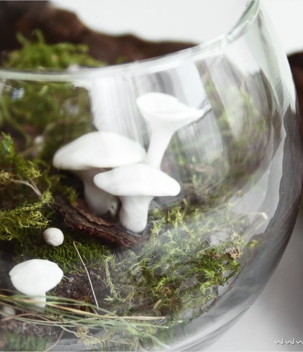 Herbst im Glas: Deko-Pilze aus Kaltporzellan