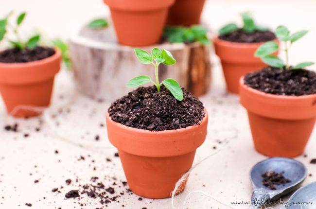 Oreo Dirt Pudding – Schoko-Pudding im Blumentopf